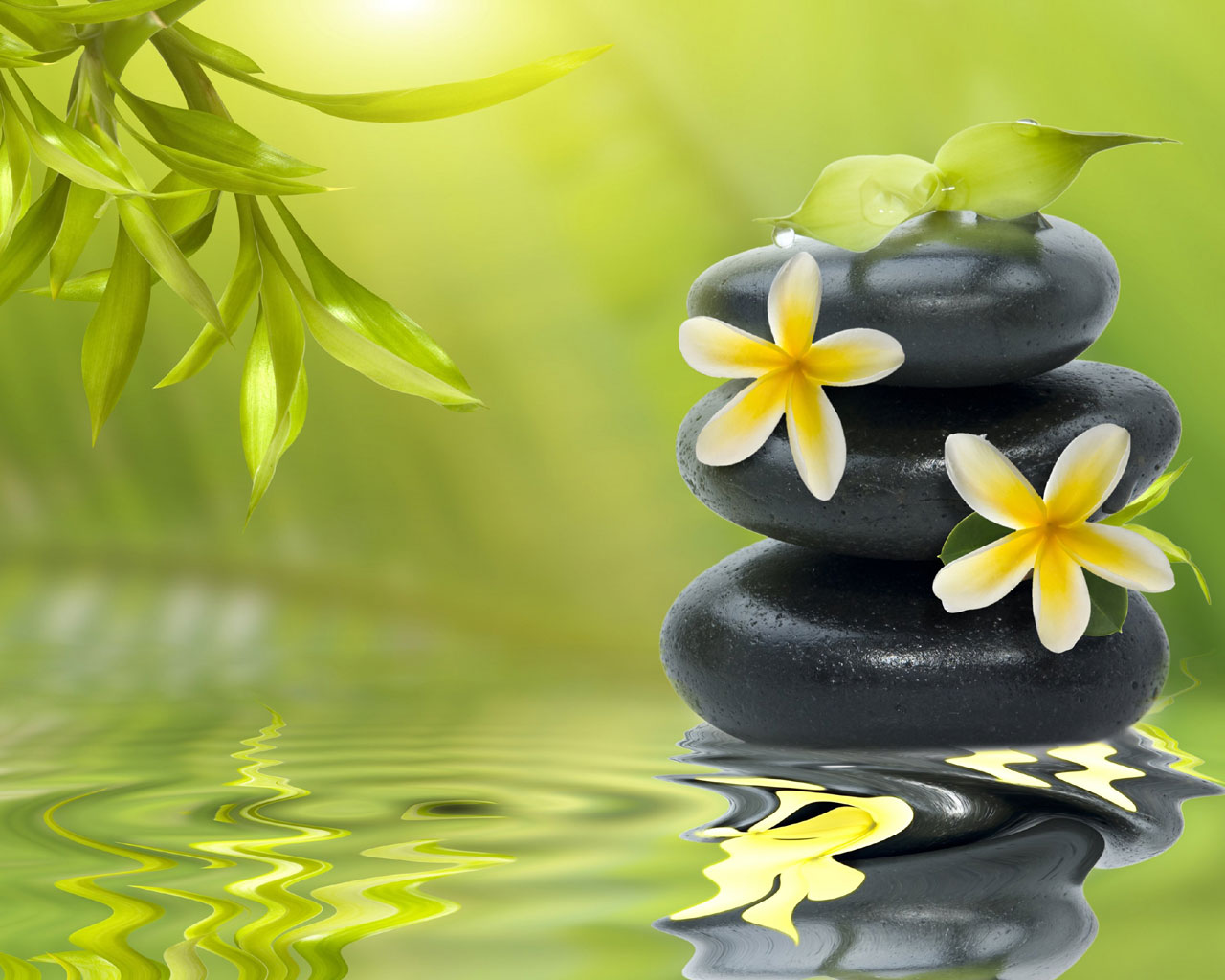 Zen Meditation HD Wallpaper Download 1280x1024