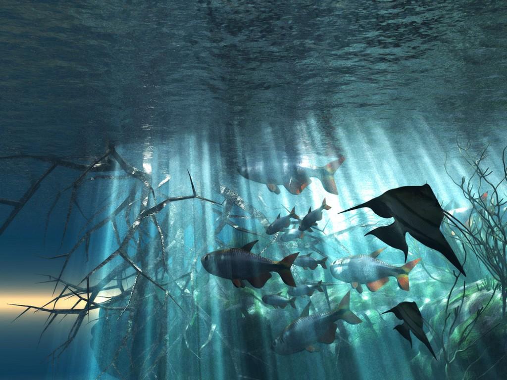 Desktop Wallpapers Online Best Collection Of Ocean Wallpapers 1024x768