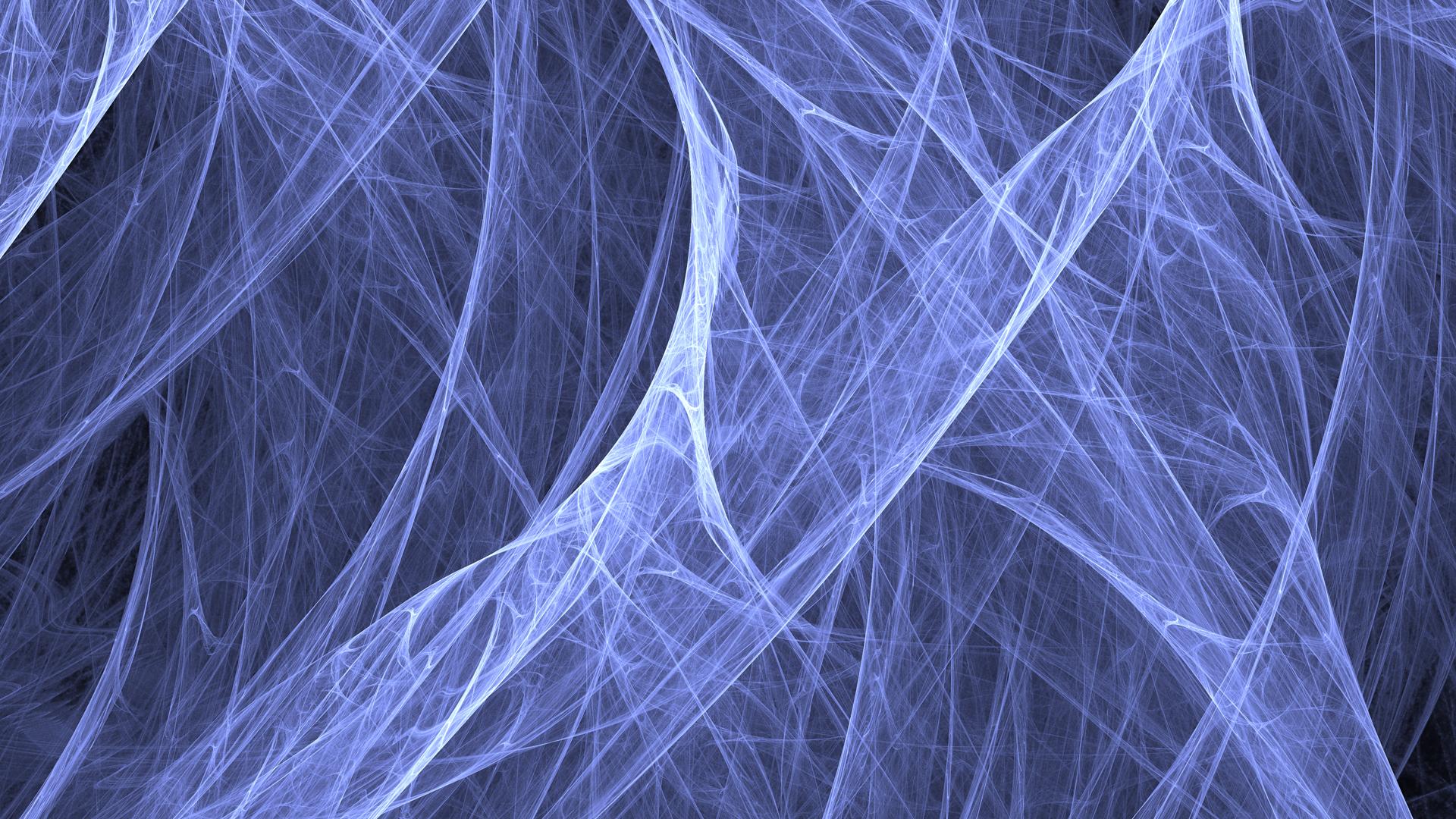 BurraMundi Spider Webs DesktopWallpaper 1920x1080