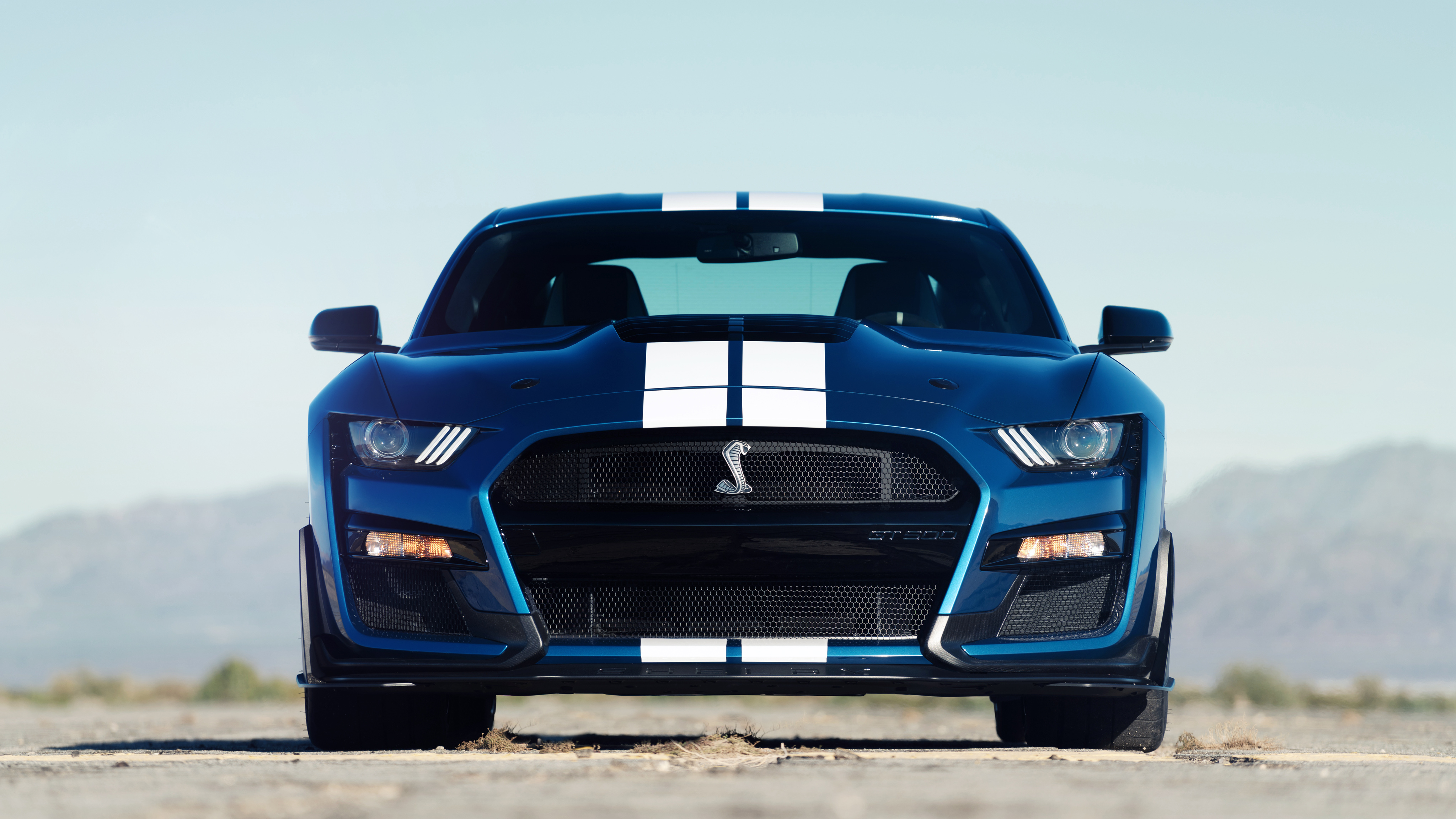 2020 Ford Mustang Shelby GT500 4K Wallpaper HD Car Wallpapers 4096x2304