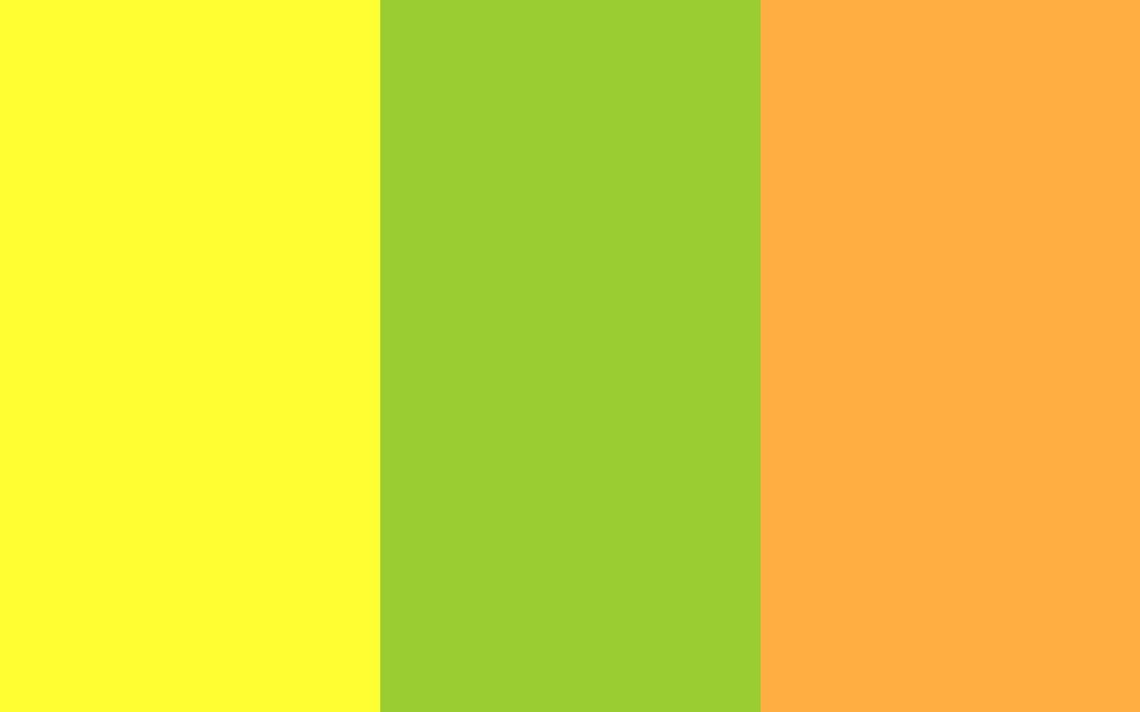 green yellow orange and yellow rose solid three color background 1280x800