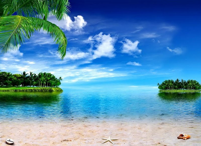 Tropical Island Desktop Wallpaper 800x580