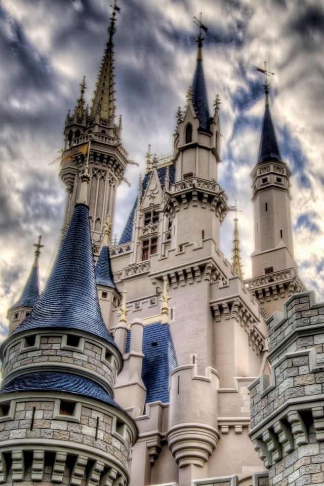 Disneyland iPhone Wallpaper Castles Palaces and Churches Pintere 640x960