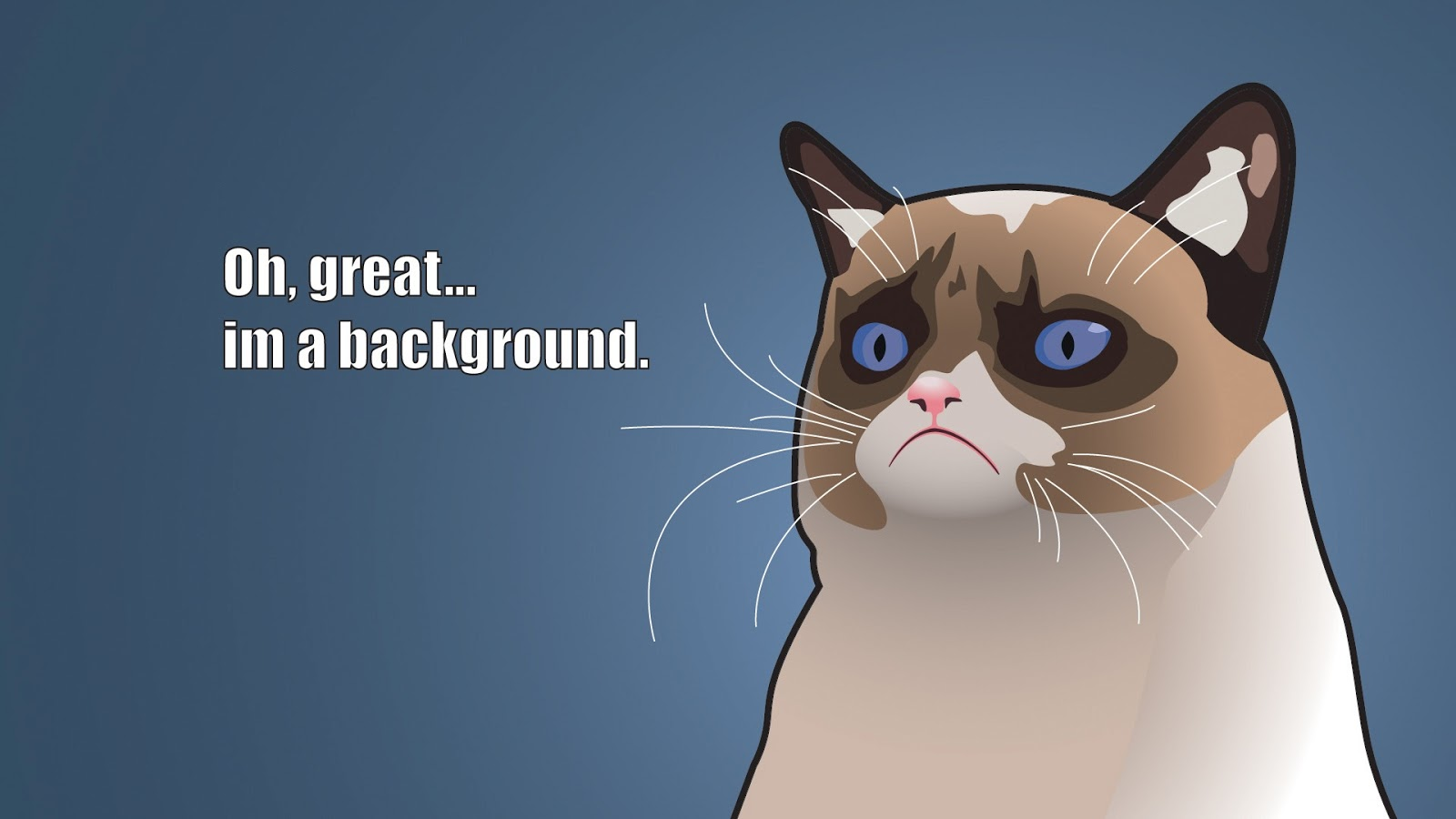 Grumpy Cat Cartoon 1600x900