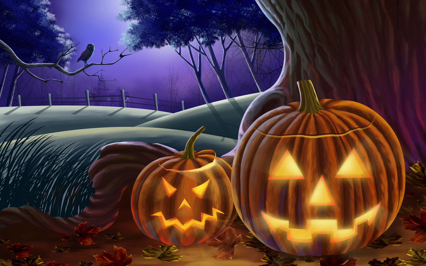 45 Scary Halloween 2012 HD Wallpapers Pumpkins Witches Spider Web 1440x900