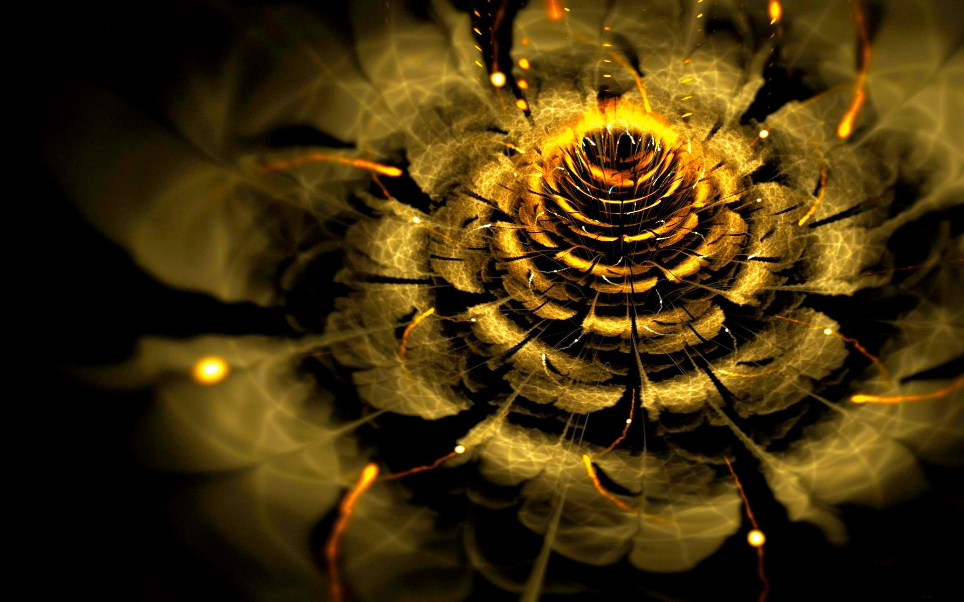 GOLDEN FLOWER wallpaper   ForWallpapercom 1920x1200