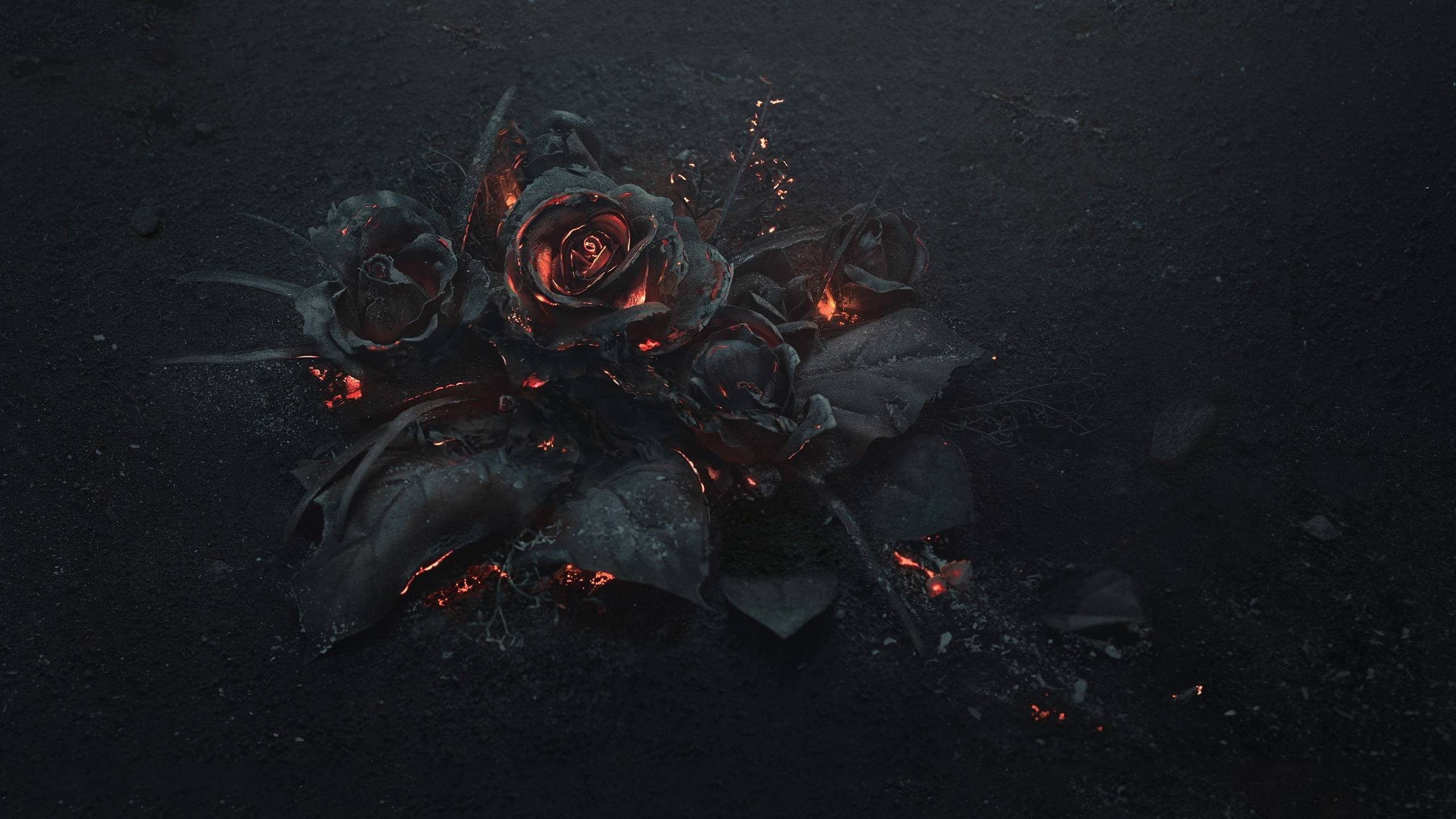 Goth Rose Related Keywords amp Suggestions   Goth Rose Long 2560x1440