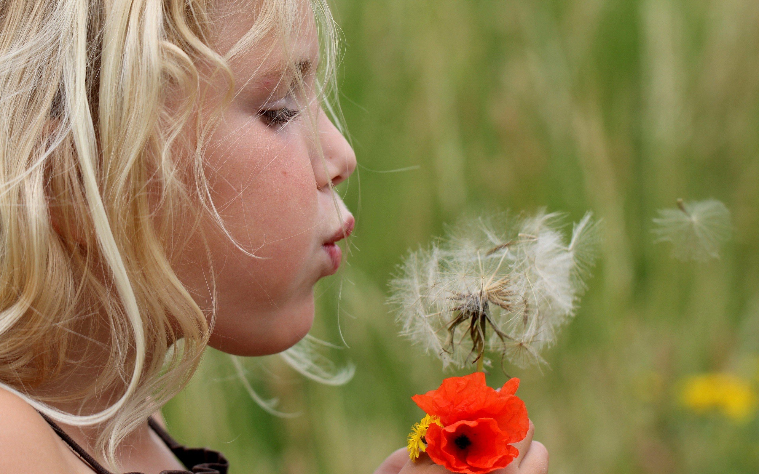 Girl blowing on a dandelion flower wallpapers and images   wallpapers 2560x1600
