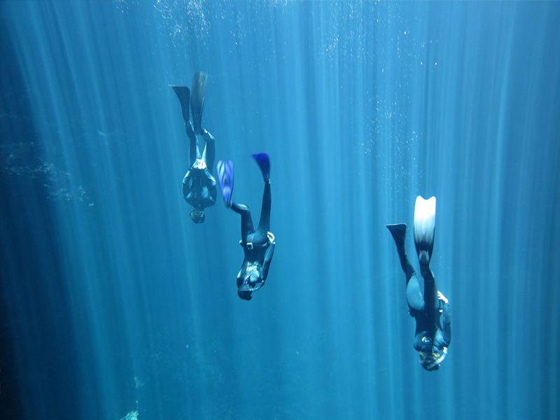 Apnea Diving Mexico Freediving Unikgocom 800x600