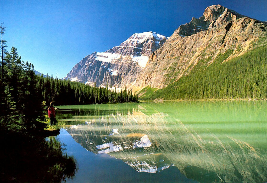 Canadian Rockies Cavell Lake   nature wallpaper featuring mountains 1116x768