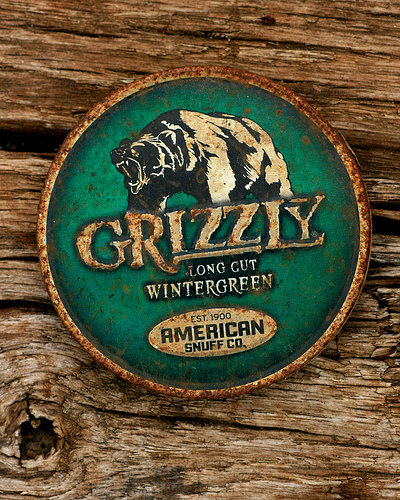 Grizzly Flickr   Photo Sharing 400x500