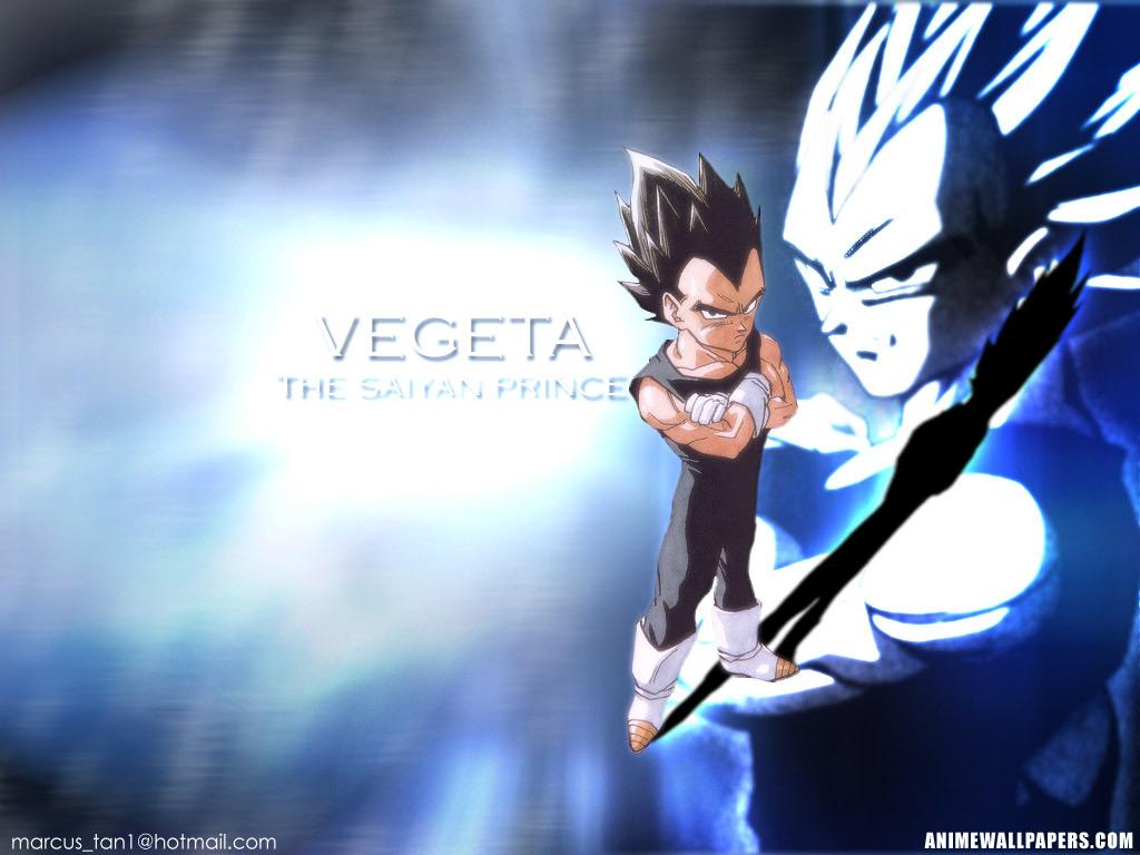 Vegeta   Prince Vegeta Wallpaper 30750526 1024x768