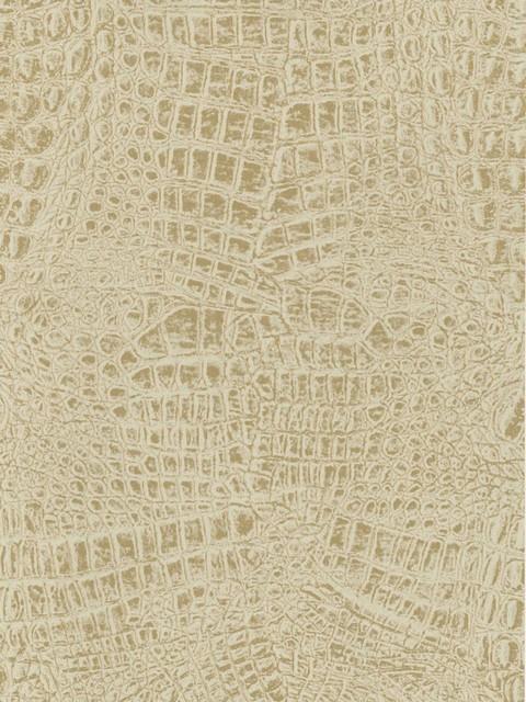 Alligator Skin Wallpaper 480x640