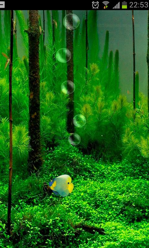 Fish Tank 3D Live Wallpaper   screenshot 480x800