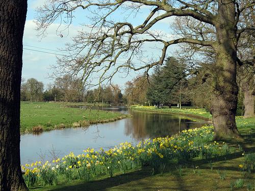Spring Farm Scenes Wallpaper Wallpapersafari