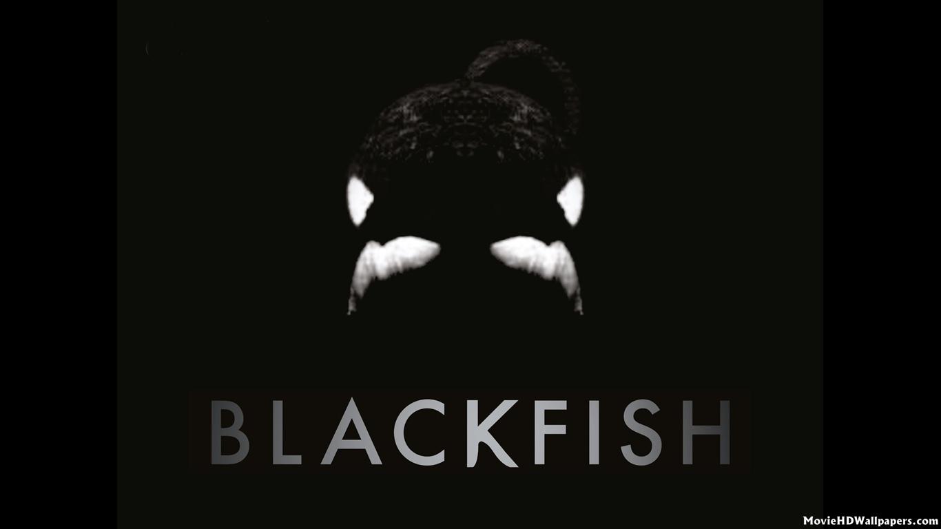 Blackfish 2013   Movie HD Wallpapers 1366x768