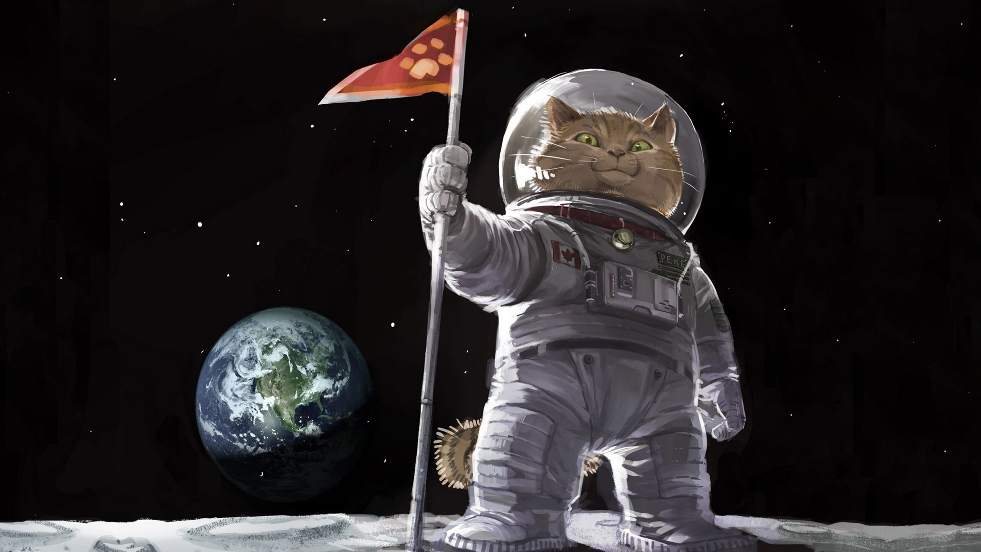 Cat astronaut on the moon wallpapers and images   wallpapers pictures 1920x1080