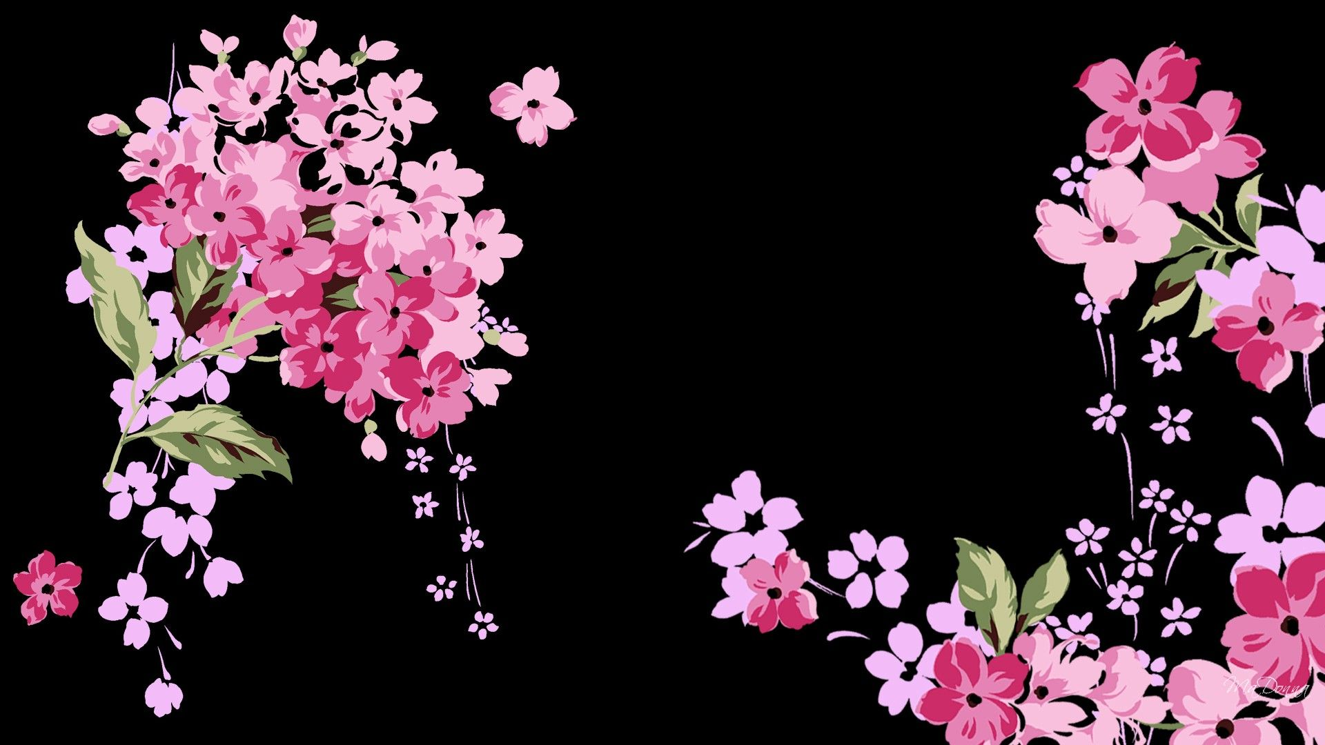 65 Black Floral Desktop Wallpapers   Download at WallpaperBro 1920x1080