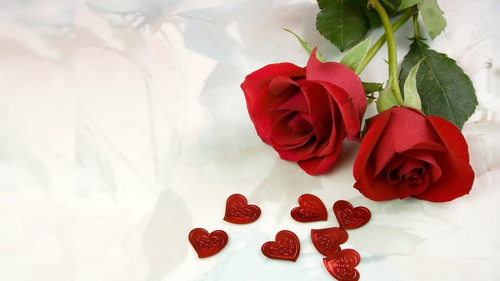red roses most popular rose rose wallpapers beautiful rose red 1600x900