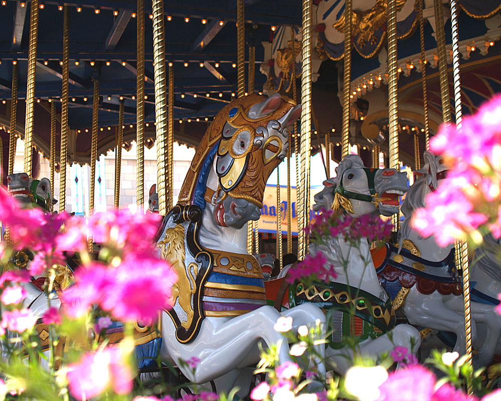 Prince Charming Regal Carrousel Disney World Resort Disney World 1000x800