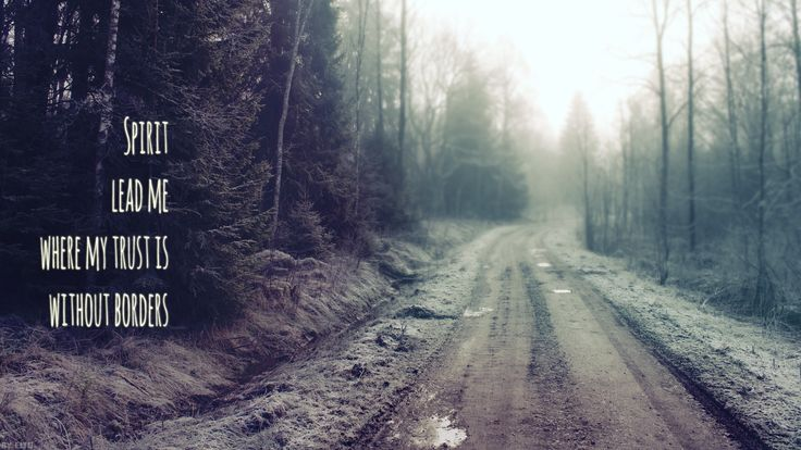 Wallpapers Water Beautiful Road Wallpapers Walk Forests Nature Nature 736x414