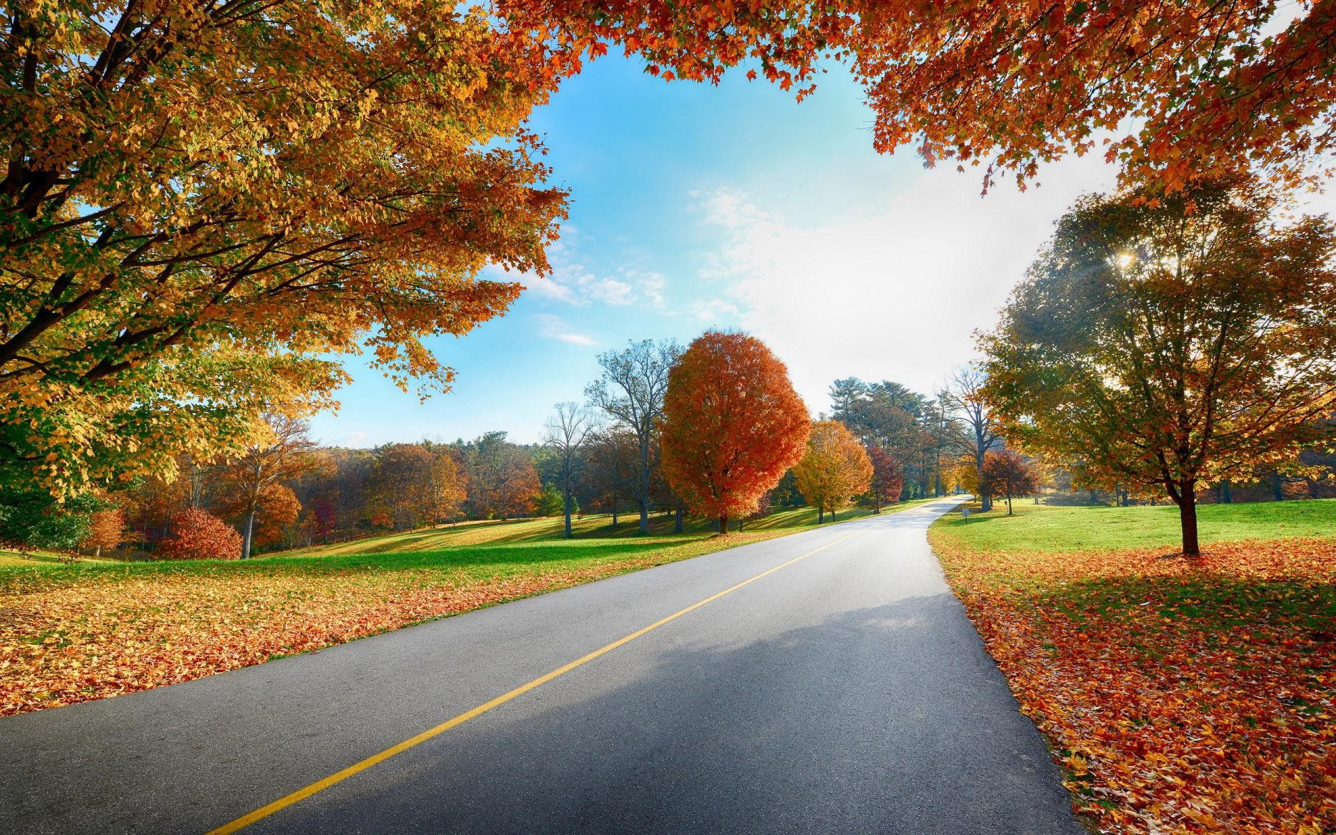 Country Road Autumn Desktop Wallpapers   New HD Wallpapers 1920x1200
