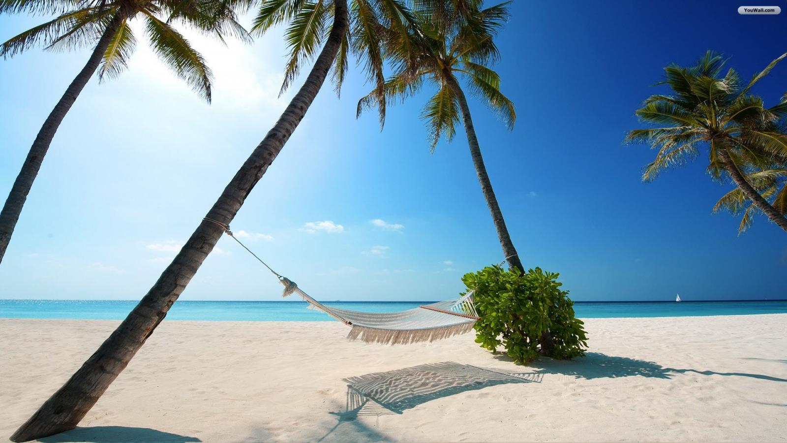Paradise Beach Wallpaper   wallpaperwallpapersfree wallpaper 1600x900