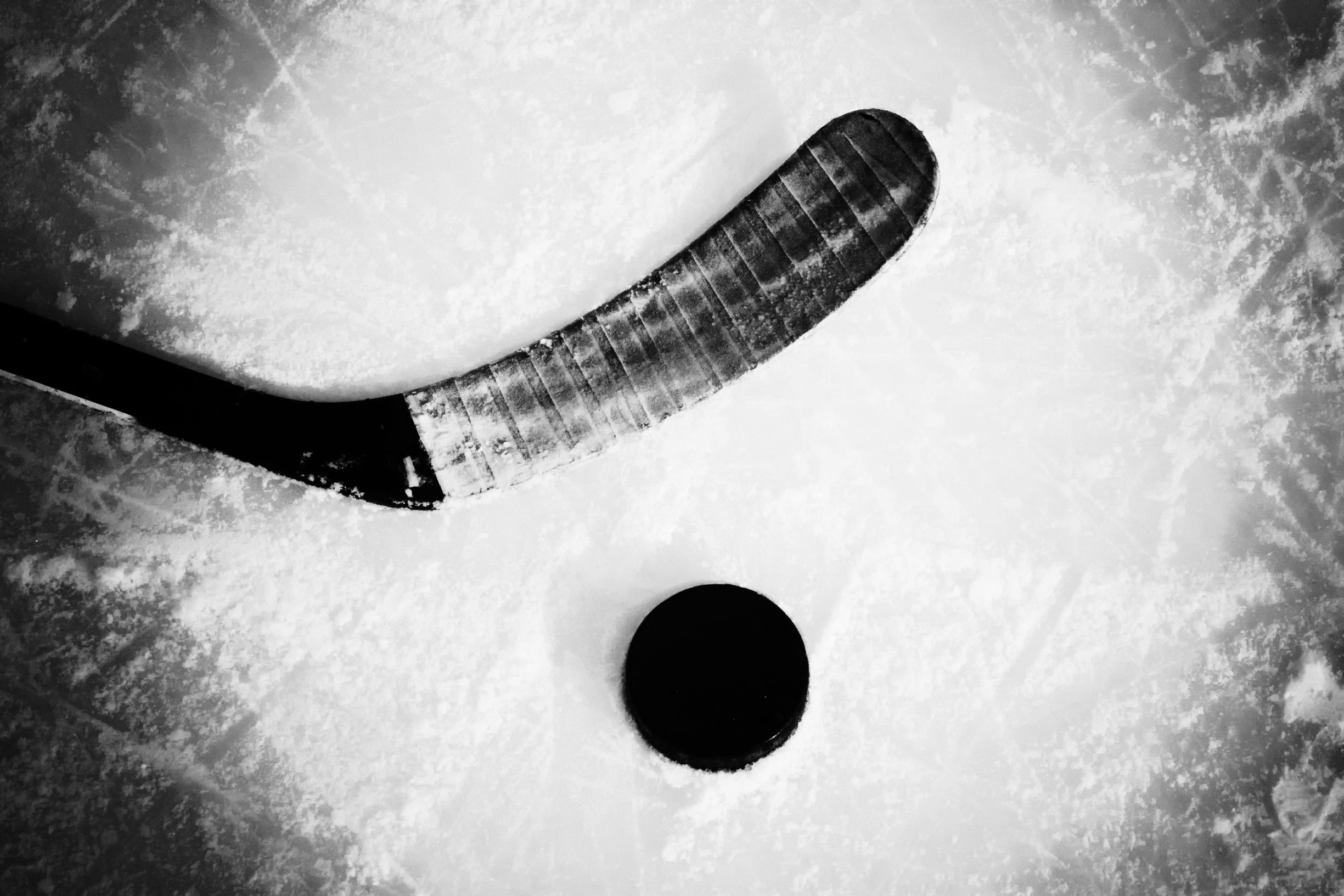 Ice Hockey Wallpapers HD Backgrounds Images Pics Photos 2449x1633