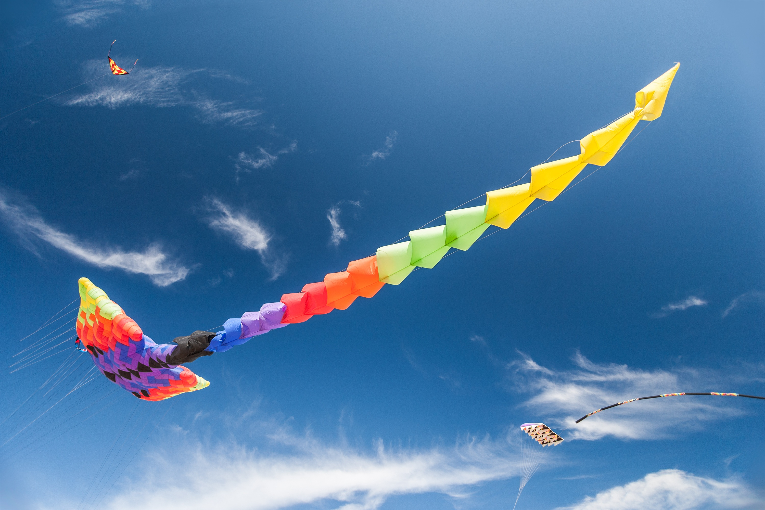 Kites flying in the sky HD Wallpaper Background Image 3000x2000