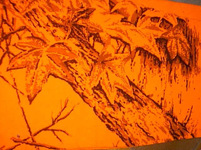 blaze orange commonly called hunters orange camo shows up extremely 640x480
