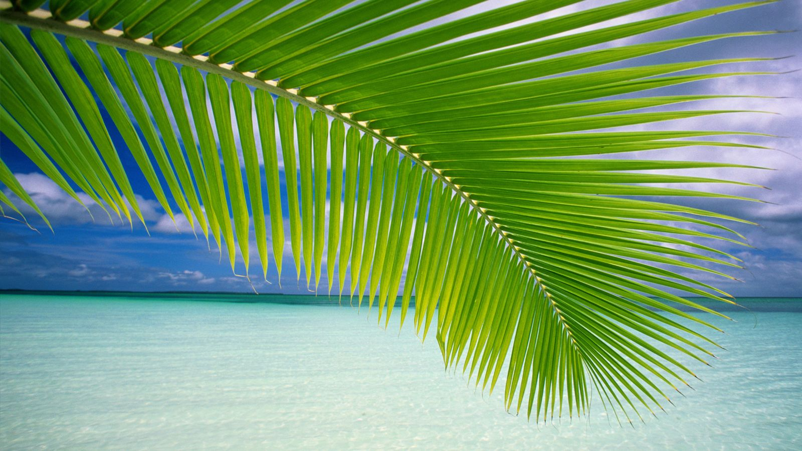 wallpaper Beach Wallpaper Windows 7 1600x900