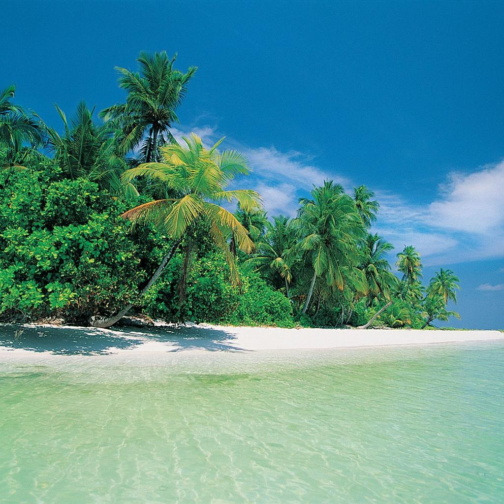 Exotic Beach: [43+] Tropical Beach Screensavers And Wallpaper On