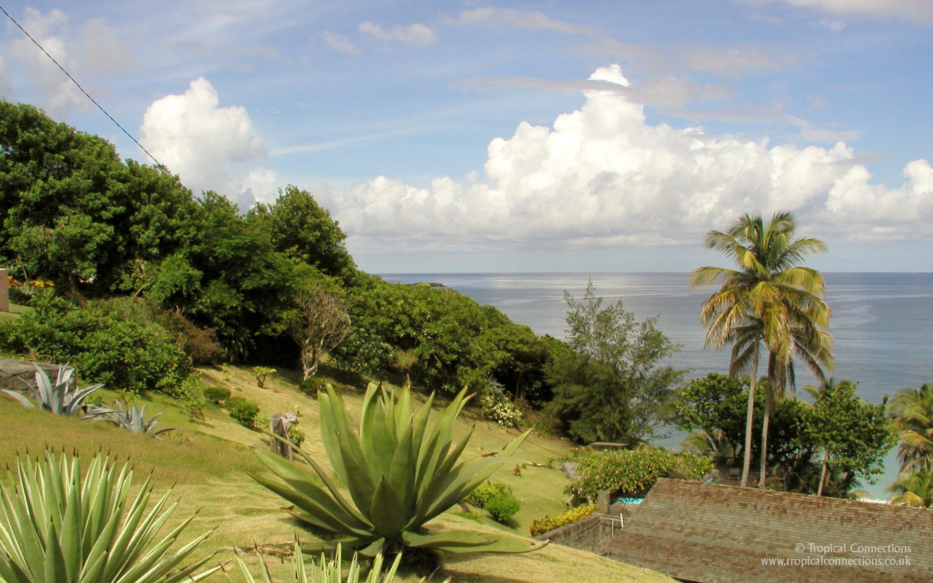 19201200 pixel widescreen wallpaper of a Hill Side Garden in Grenada 1920x1200