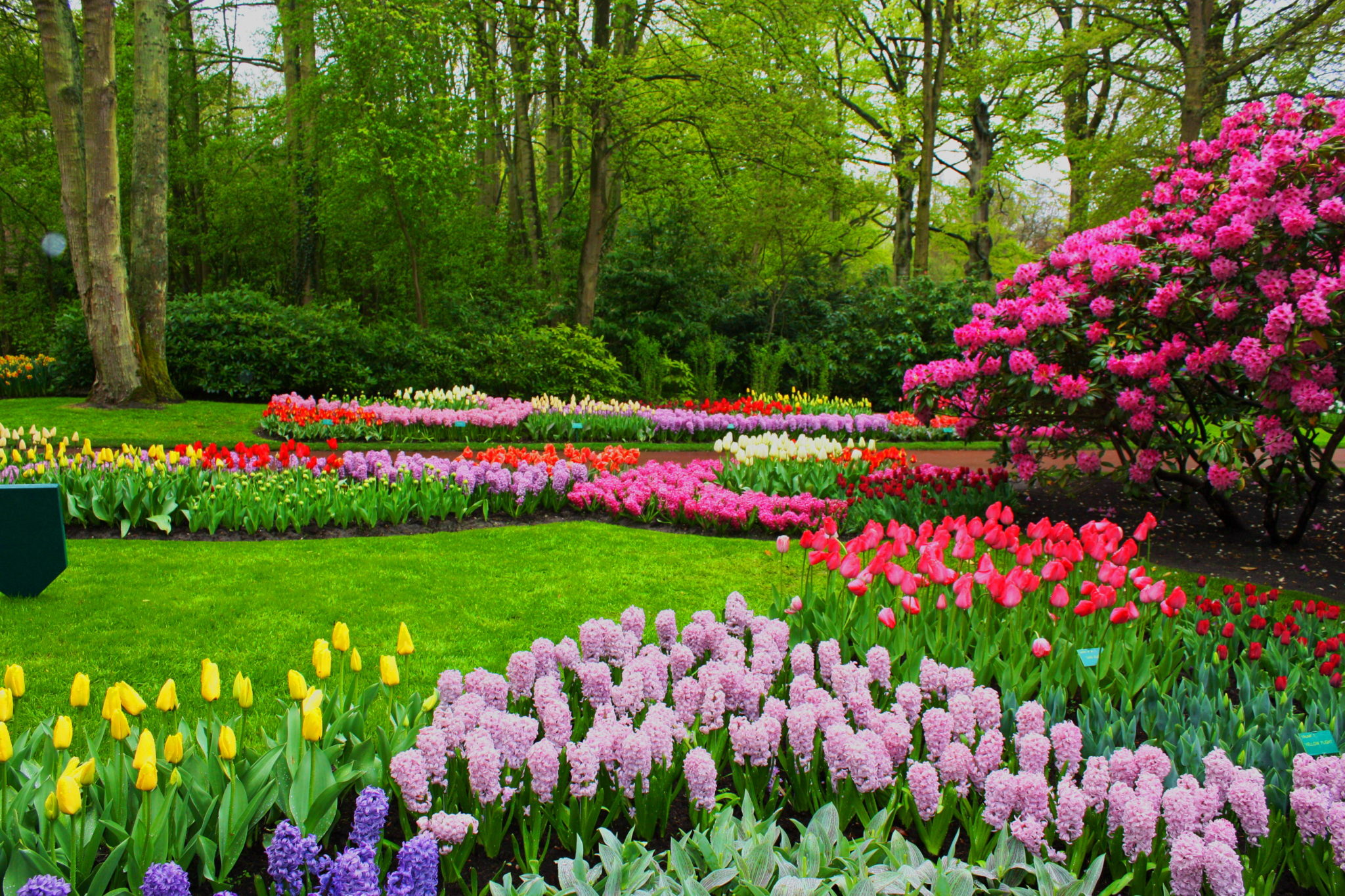 35 Beautiful Spring Pictures and Wallpapers 2048x1365