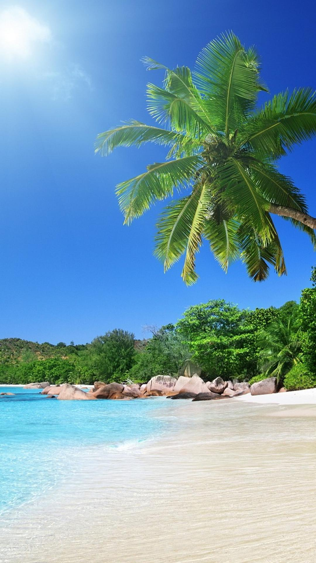 tropical beach scenes wallpaper