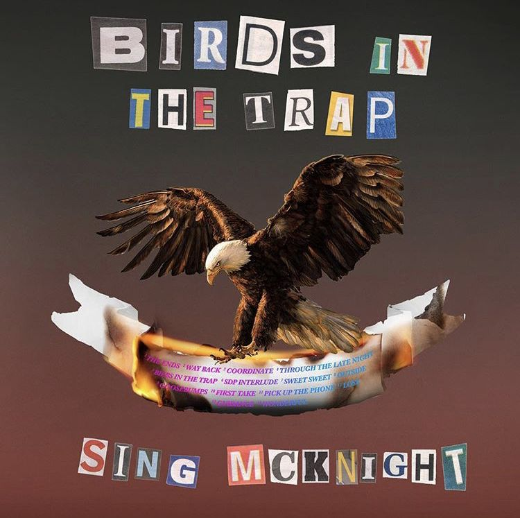 Pin by Jamie Souza on Birds in the Trap Sing McKnight Travis 750x747