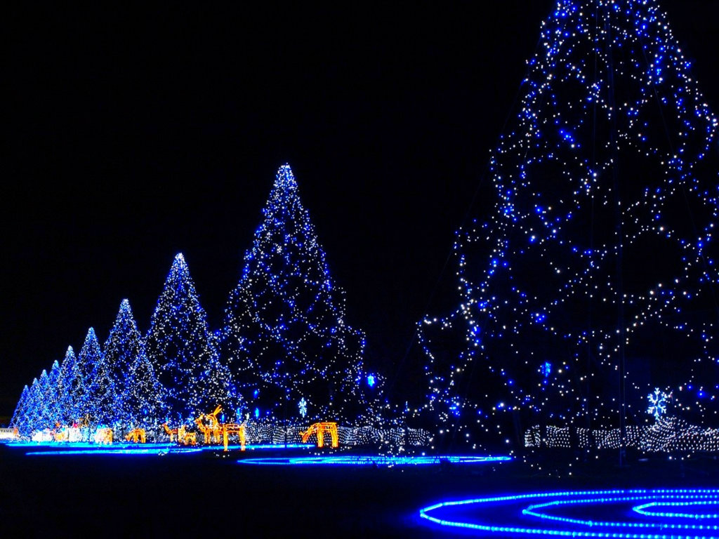 Lights on Merry Christmas Most HD Wallpapers Pictures Desktop 1024x768