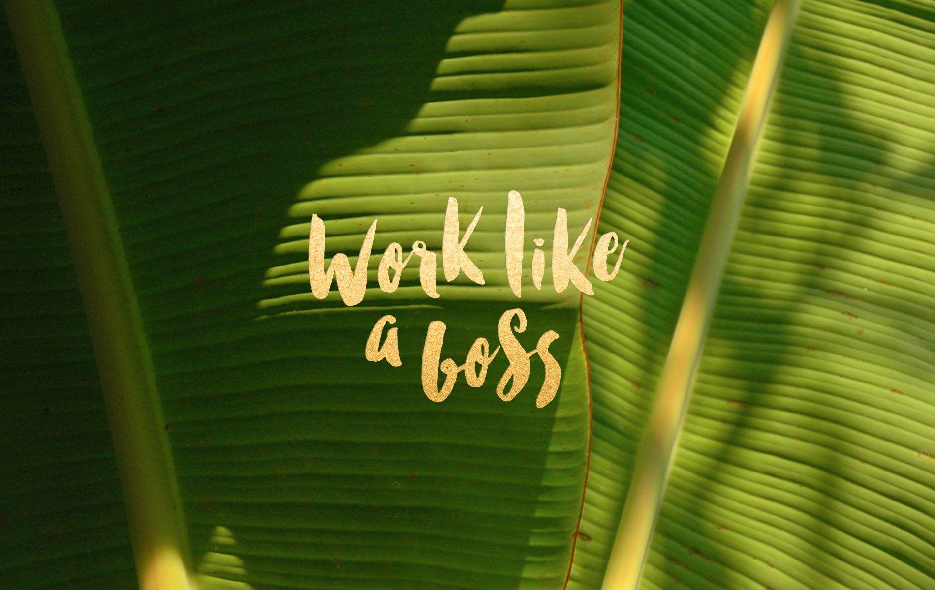 Work Like a Boss Desktop Wallpaper by Leysa Flores 1900x1200