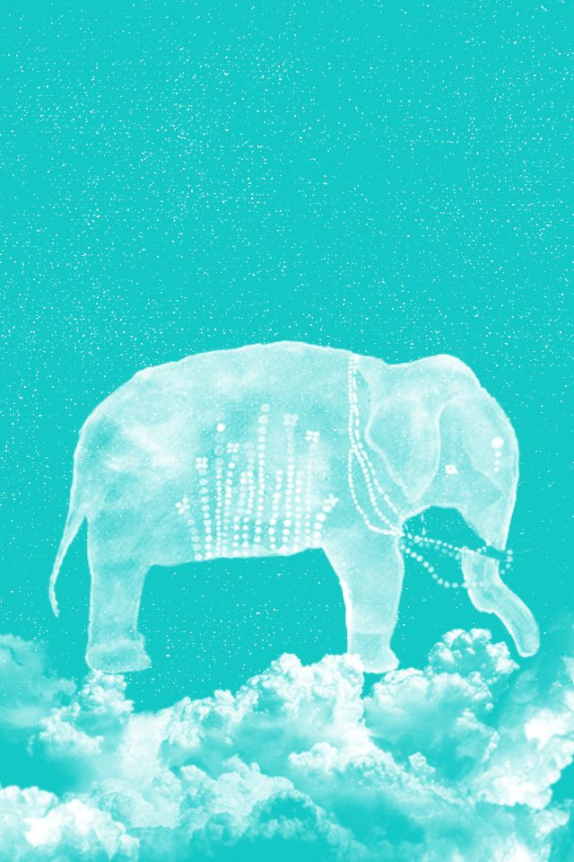 elephant iphone background elephant iphone wallpaper wallpapersafari 7023