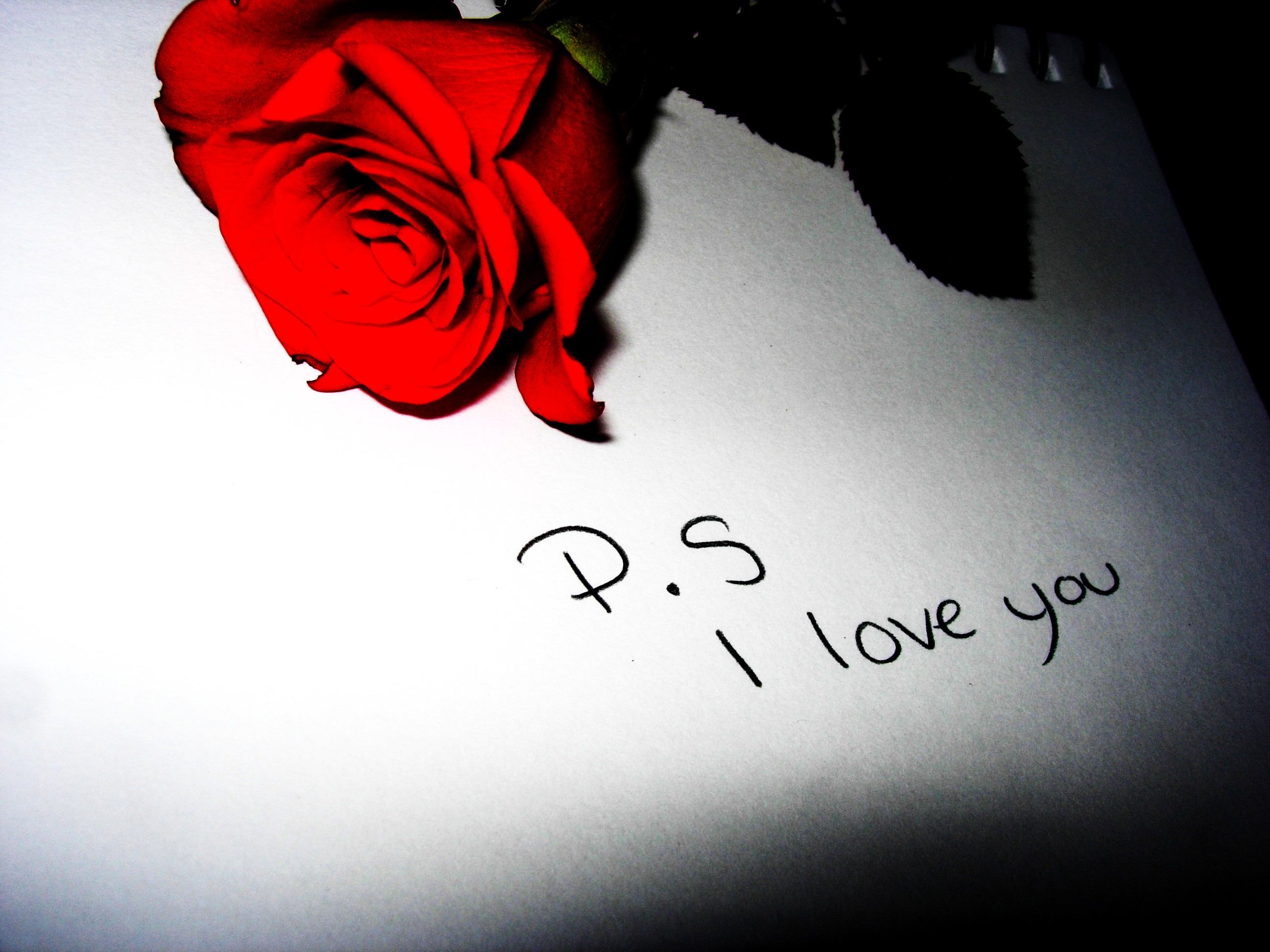 Love You HD Wallpapers 2592x1944