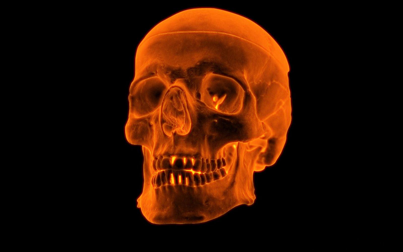 3D Fire Skull wallpapers 1600x1000
