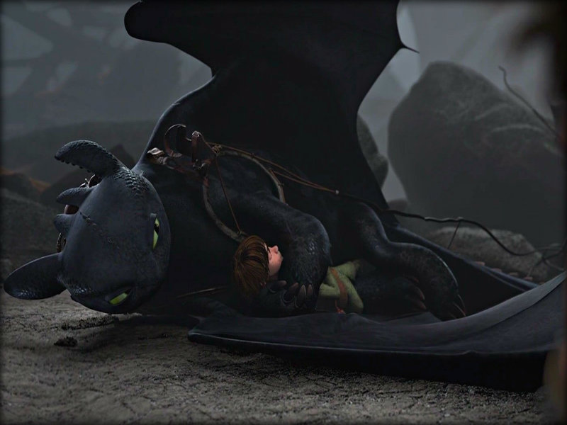 Toothless   Toothless the Dragon Wallpaper 33005435 800x600