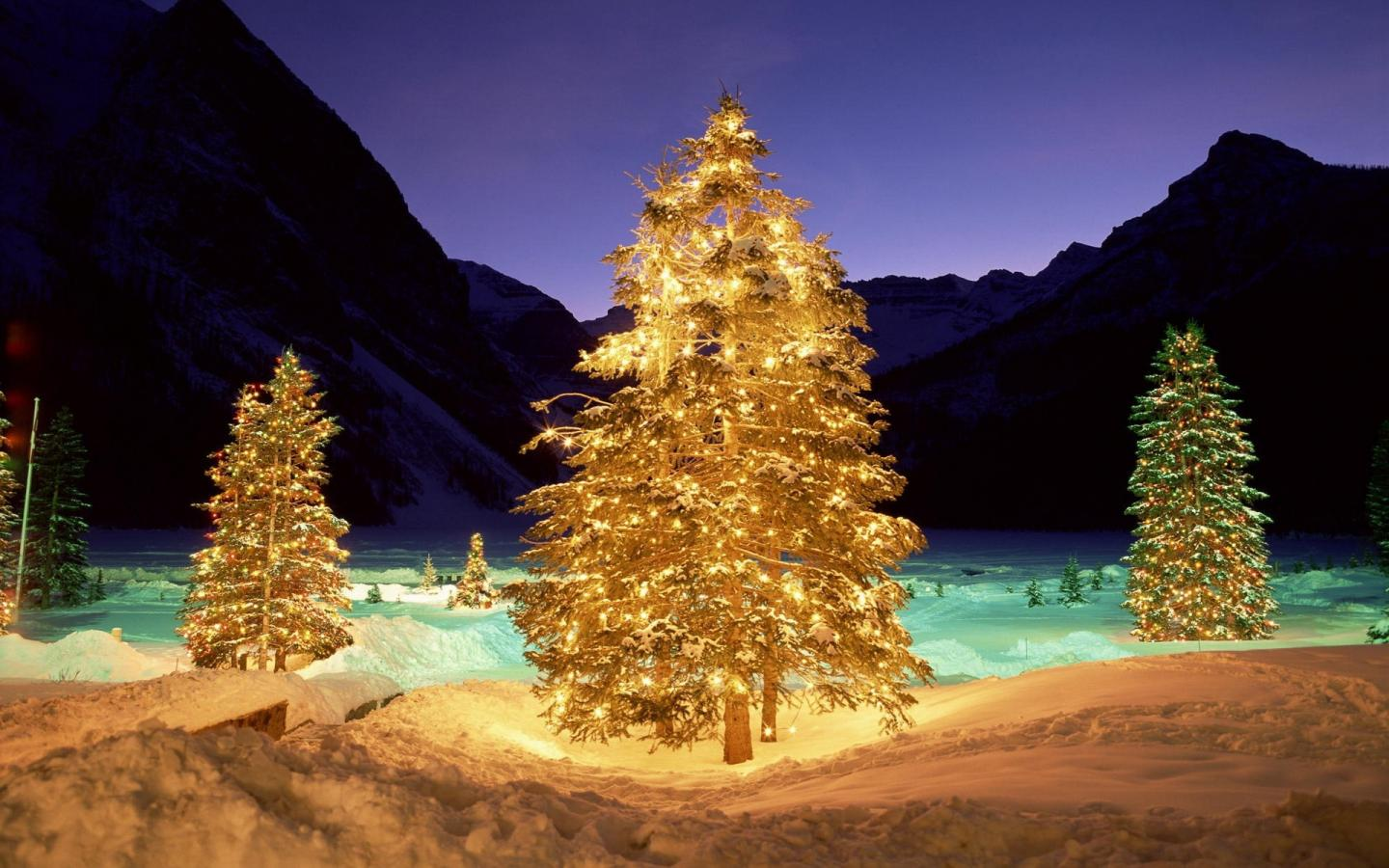 christmas tree hd wallpaper