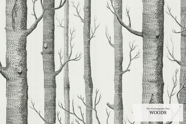Birch Trees Wallpaper Cole sons woods wallpaper   house of 640x427