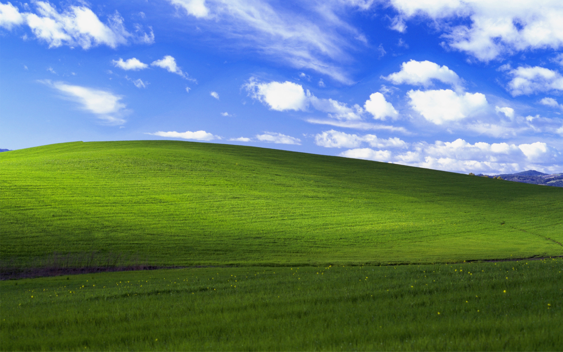 The Pride Of Windows Desktop Bliss Wallpaper Filesize 1024x768 529k 1920x1200