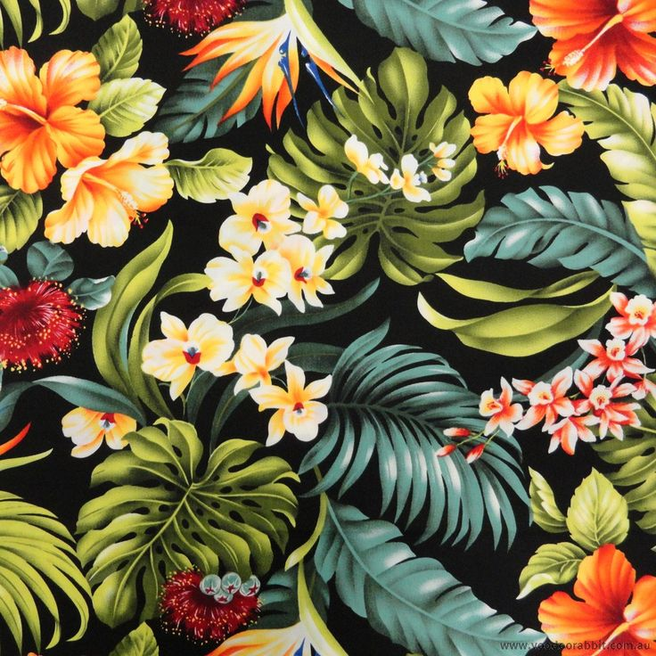 Photo Collection Tropical Flowers Tumblr Wallpaper