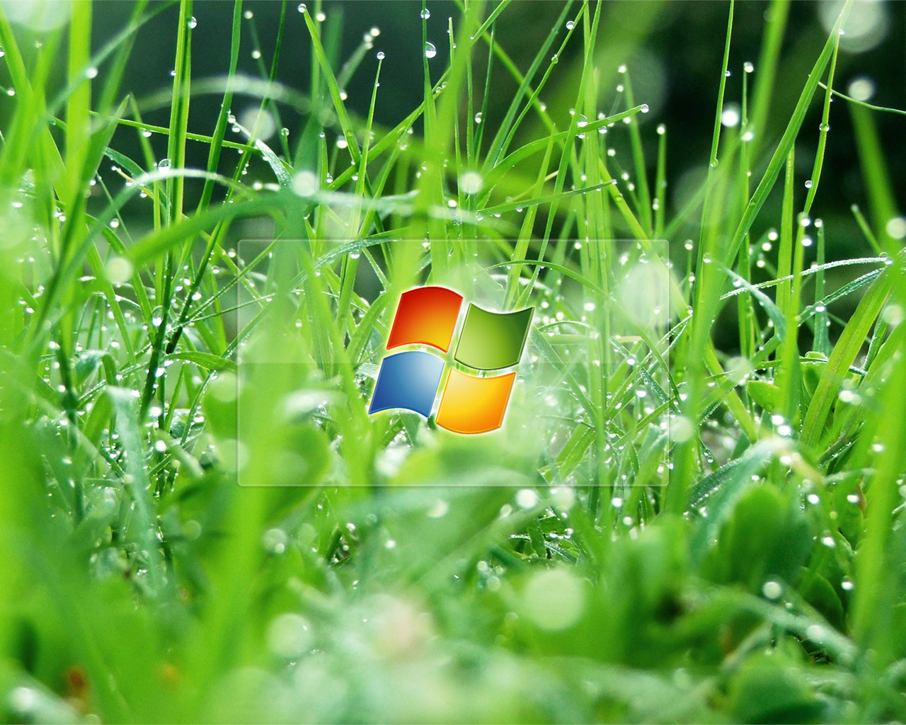 Windows Glass Effect Wallpapers HD Wallpapers 1280x1024