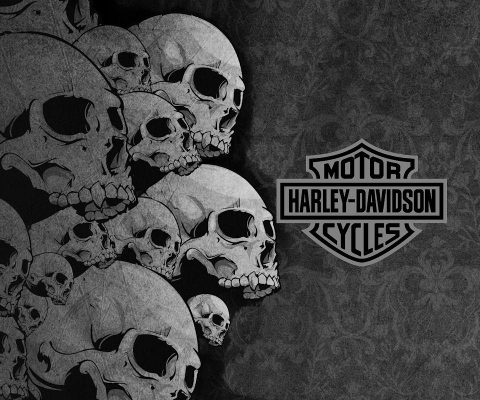 Harley Davidson Skull Logo Wallpaper Images Pictures Becuo 960x800