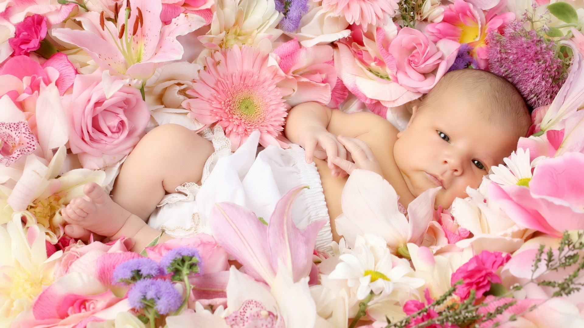 Cute Baby Lying Flowers Wallpaper HD Baby bwalles com 1920x1080