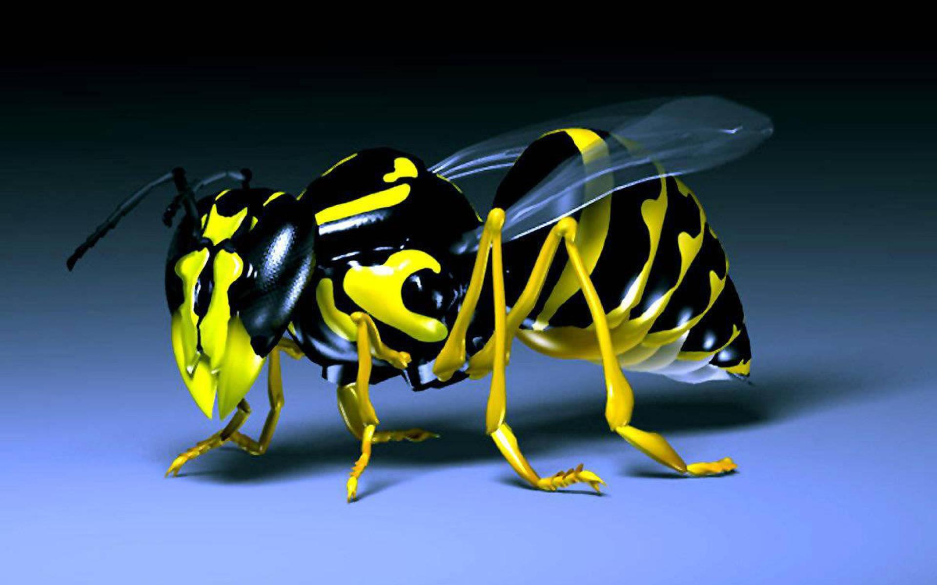 3D Bee Wallpaper 1920x1200